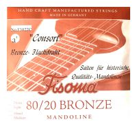 Thumbnail van Fisoma F3022C Consort 80/20 single pair of A strings for mandoline.