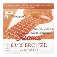 Thumbnail van Fisoma F3024C Consort 80/20 single pair of G strings for mandoline.